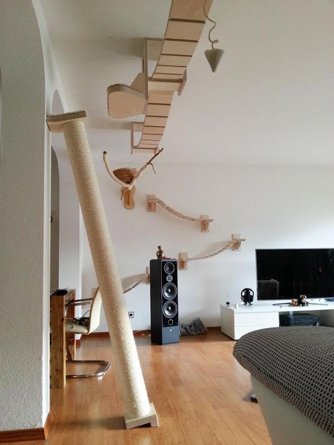 Немецкие дизайнеры придумали идеальную мебель для кошек
