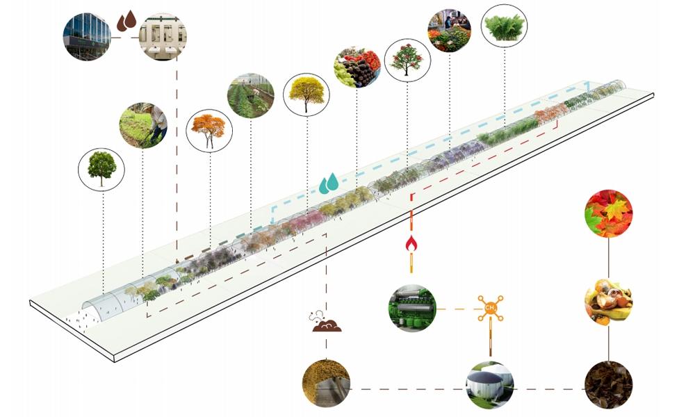 Сокольники: каким мог стать крупнейший парк Москвы